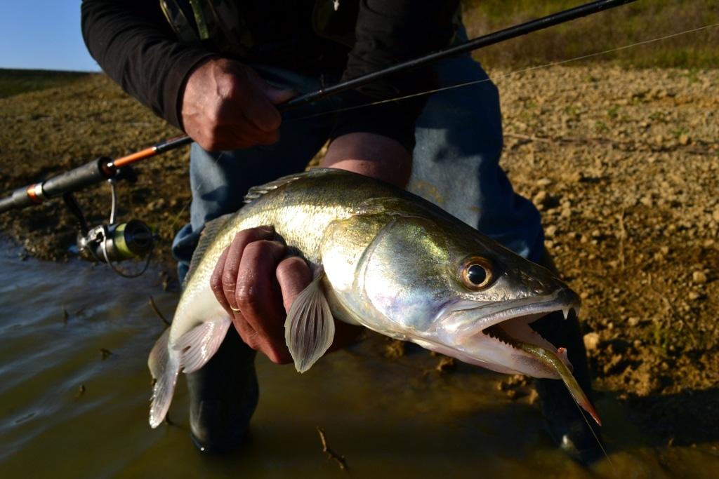 La pêche sur la diète en avril
