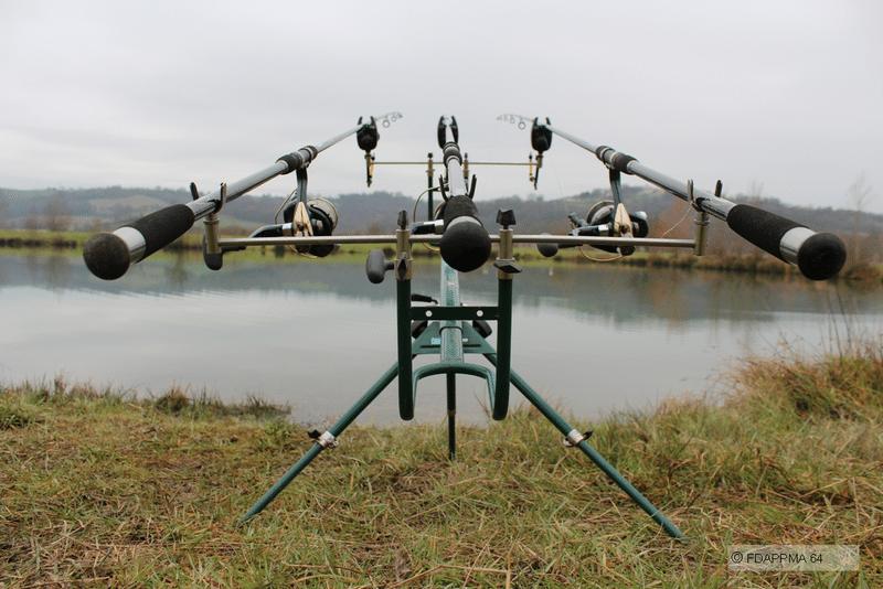 Lalliage la chasse la pêche