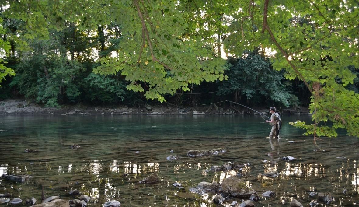 La pêche dans le domaine de Rostov sur quoi quand attraper
