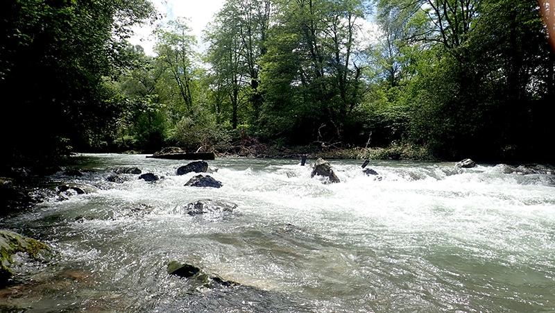 rivière des pyrénées
